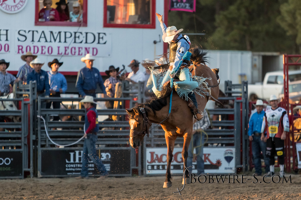 Saddle bronc rider Ian McGivney rides Summit Pro Rodeo's 255 in the second performance of the Elizabeth Stampede on Saturday, June 2, 2018.