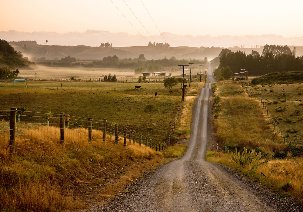 Wills Road, A shingle road through farmland in Upper Moutere, Nelson region, New Zealand