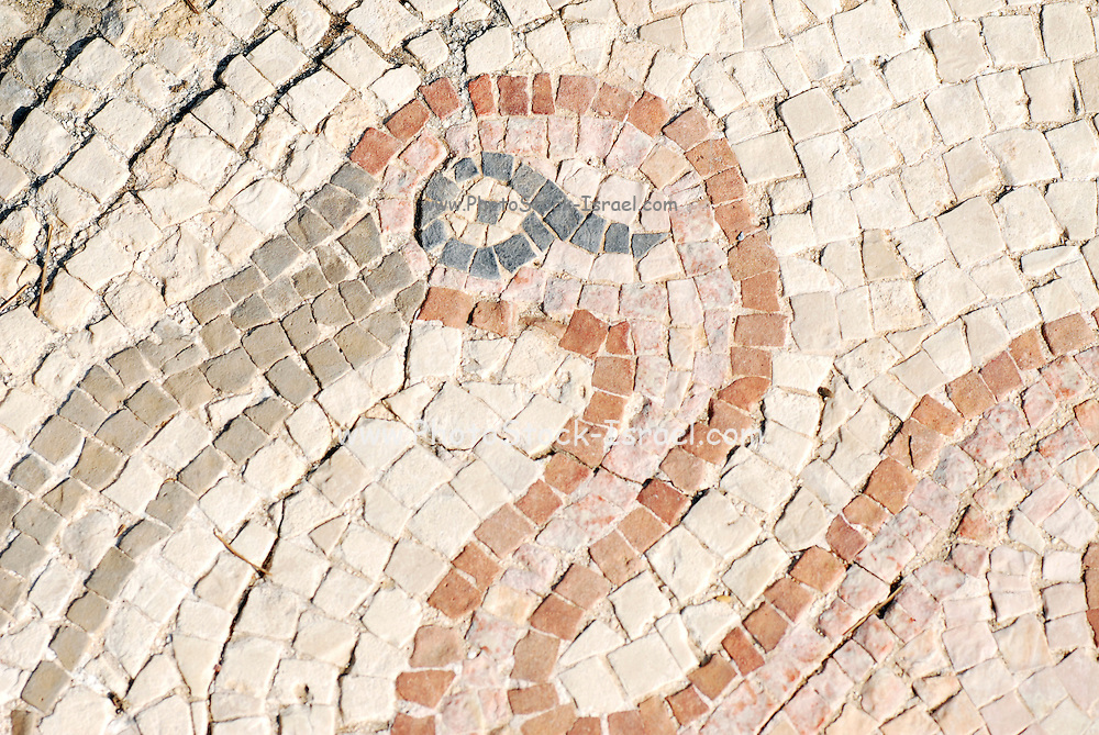 The Palace of the 'Bird Mosaic' a 14.5 x 16m floor of a villa dating to the Byzantine period, 6-7th century CE. Caesarea, Israel Flamingo detail
