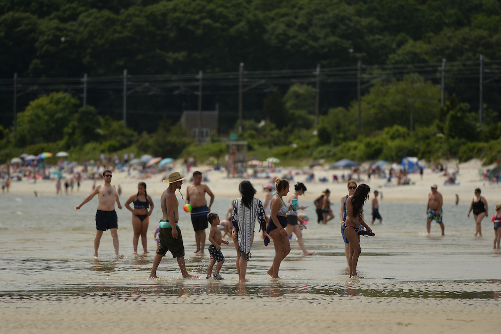 7/3/16 :: REGION :: STAND ALONE :: Beachgoers crowd the sands at Rocky Neck State Park Sunday, July 3, 2016. (Sean D. Elliot/The Day)