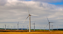 Wind Turbines near the village of Forth in South Lanarkshire, Scotland<br /> <br /> (c) Andrew Wilson | Edinburgh Elite media