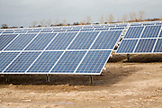 Solar array of photovoltaic panels in a large new solar park at Bucklesham, Suffolk, England