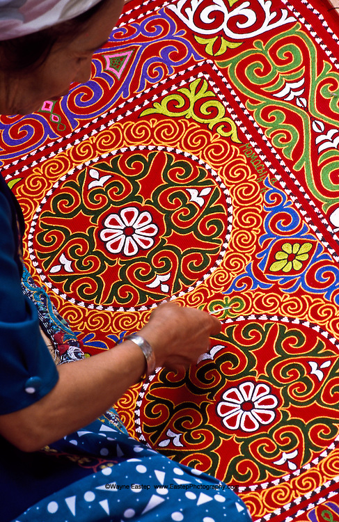 """Zakiya Akai-Kyzy is a practicing atytorney besides being a master embroiderer and Chi artist.  Her work is a good example of cross-cultural influences due to the time she spent in Mongolia.  Here she works on a Tuskiiz using a chain stitch called """"The Trace of the Mouse.""""  A Tuskiiz is a wall-hanging that can also be used as a decorative covering."""