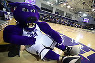 HIGH POINT, NC - JANUARY 06: Prowler, High Point's mascot. The High Point University of Panthers hosted the Charleston Southern University Buccaneers on January 6, 2018 at Millis Athletic Convocation Center in High Point, NC in a Division I men's college basketball game. HPU won the game 80-59.