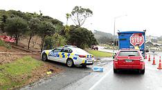 Auckland-Woman's body found near Silverdale Motorway off ramp