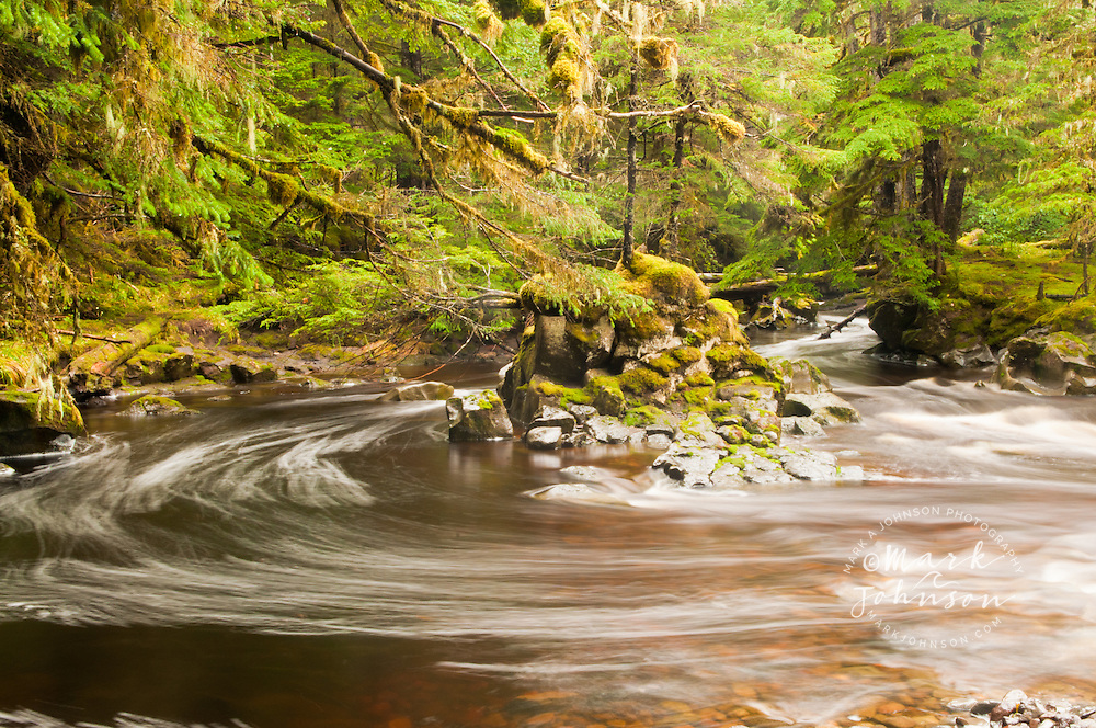 Stream and forest at Fred's Creek, Kruzof Island, Southeast Alaska
