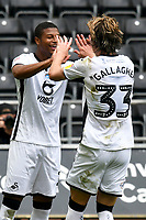 Football - 2019 / 2020 Championship - Swansea City vs Sheffield Wednesday<br /> <br /> Rhian Brewster of Swansea City celebrates scoring his team's first goal with Conor Gallagher of Swansea City<br /> in a match played with no crowd due to Covid 19 coronavirus emergency regulations, at the almost empty Liberty Stadium.<br /> <br /> COLORSPORT/WINSTON BYNORTH