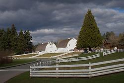 United States, Washington, Bellevue, Kelsey Creek Farm