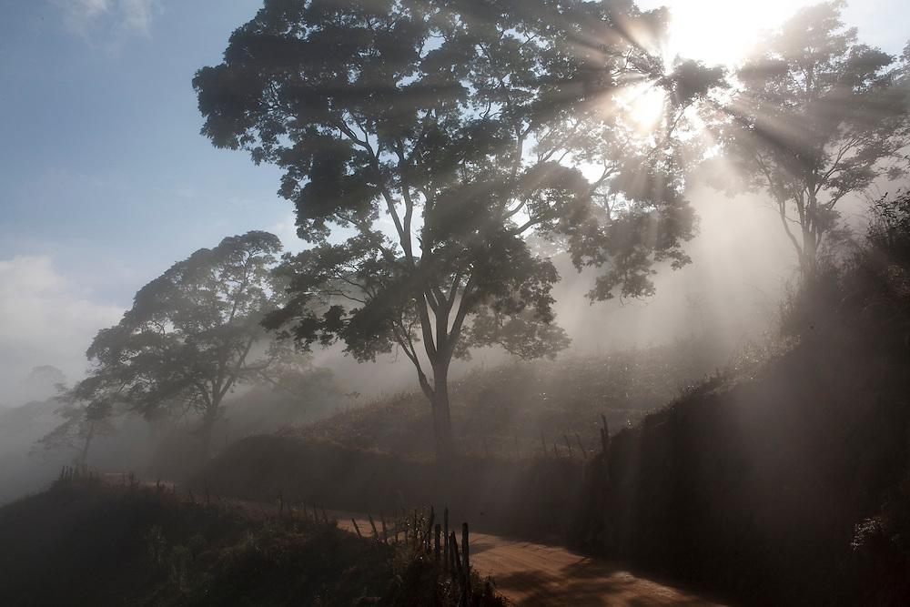 Piranga_MG, Brasil...Estrada de terra em Piranga, Minas Gerais...Dirt road in Piranga, Minas Gerais...Foto: LEO DRUMOND / NITRO