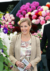Countess of Wessex on a visit to the opening of  the RHS Hampton Court Palace Flower Show , Monday, 2nd July  June 2102.  Photo by: Stephen Lock / i-Images
