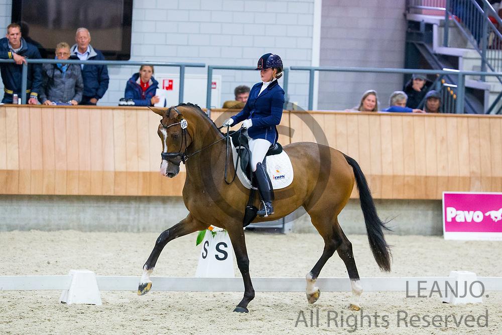 Jeanine Nieuwenhuis - Great Lady TC<br /> KWPN Kampioenschappen 2016<br /> &copy; DigiShots