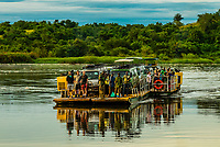 The Paraa car ferry crossing the Nile River in Murchison Falls National Park, Uganda.