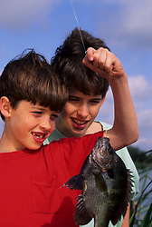 Stock photo of two young boys examining a fish that they caught