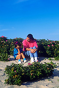 Mother and daughter sit together on a sand dune surrounded by rosehips, Cape Cod, MA