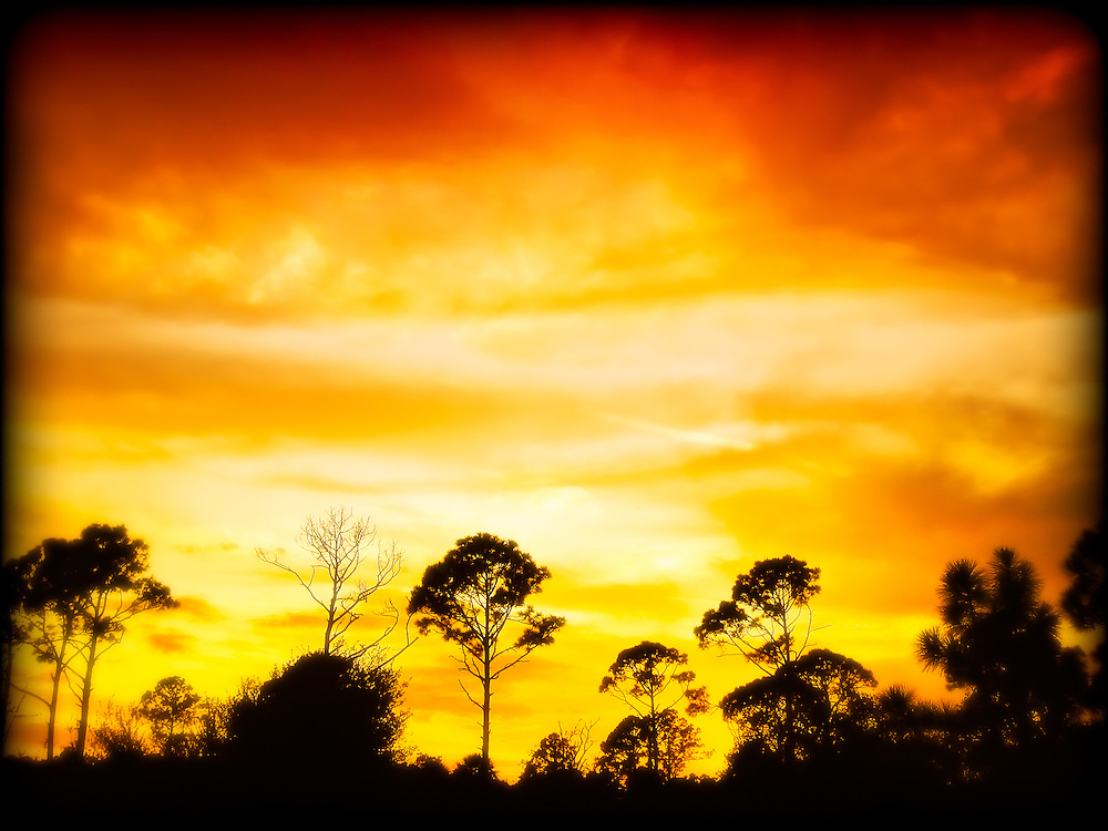 Sunset at Hickey's Creek in Alva, Fl. This was spectacular! Absolutely the best place for long hikes near Fort Myers!