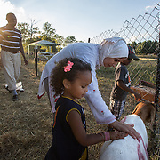 "DUMFRIES, VA - SEP12: Jude Elsanousi, 4, and her brother Anas, 5, play with goats and sheep at the Halal Farm in Dumfries, VA, September 12, 2016, their parents Hanane and Mohamed look on. The animals  will be slaughtered in honor of Eid al-Adha, the ""Feast of the Sacrifice"". (Photo by Evelyn Hockstein/For The Washington Post)"