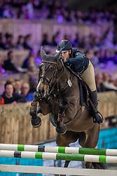 Philippe Charlotte, BEL, Cacharel de Amoranda Z<br /> Vlaanderens Kerstjumping - Memorial Eric Wauters - Mechelen 2018<br /> © Hippo Foto - Dirk Caremans<br /> 29/12/2018