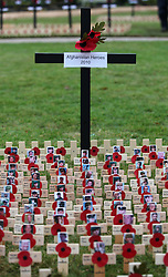 © under license to London News Pictures.  09/11/10 ..The Royal British Legion Wootton Bassett Field of Remembrance, Lydiard Park, Wiltshire, where members of the public place names on crosses dedicated to service personnel who have lost their lives in battles.