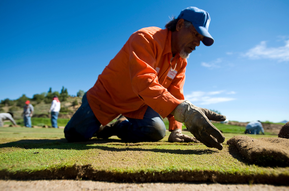 080610       Brian Leddy.Gallup Parks Department employee Antonio Hernandez lays sod on hole number eight at Fox Run Golf Course on Friday morning. Holes number seven and ten are also being resodded as well.