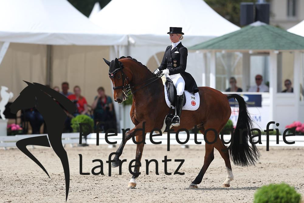 Bredow-Werndl, Jessica (GER) Zaire<br /> Balve - Optimum 2016<br /> © Stefan Lafrentz