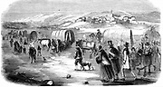 Mormons (Latter-Day-Saints). Mormon exodus from Illinois on the gruelling winter trek across the great plains between the Missouri and the Rockies to found Salt Lake City, Utah, 1846. From 'Illustration' ( Paris 1853). Wood engraving.