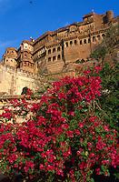 Inde. Rajasthan. Jodhpur. Fort de Mehrangarh. // India. Rajasthan. Jodhpur. Mehrangarh Fort.