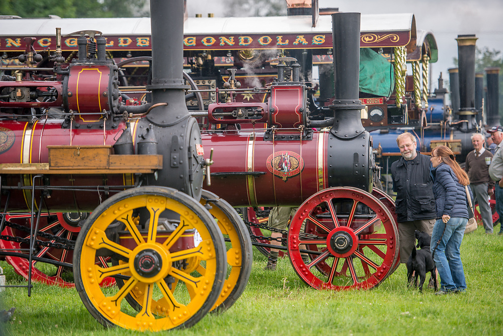Couple with dog admire steam engine tractor, Masham, North Yorkshire, UK