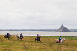 Endurance - Endurance - Alltech FEI World Equestrian Games™ 2014 - Normandy, France.<br /> © Hippo Foto Team - Leanjo de Koster<br /> 25/06/14