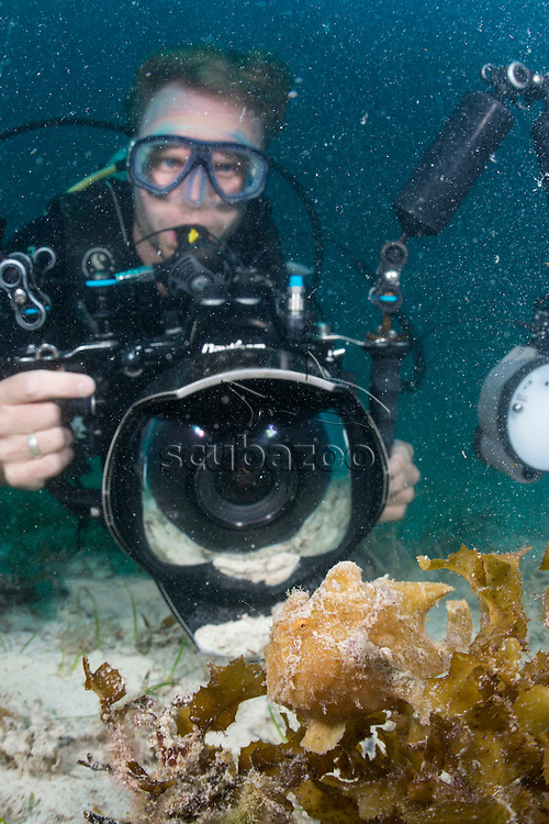 Photographer and A Painted Frogfish, Antennarius pictus, Mabul, Sabah, Malaysia, Borneo, Celebes Sea,