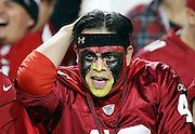 An Arizona Cardinals fan with a painted face has a look of disbelief on his face after the Arizona Cardinals win the NFL NFC Divisional round playoff football game against the Green Bay Packers on Saturday, Jan. 16, 2016 in Glendale, Ariz. The Cardinals won the game in overtime 26-20. (©Paul Anthony Spinelli)