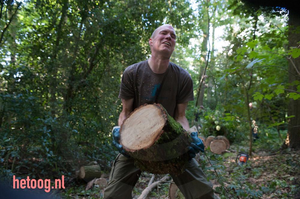 The Netherlands, Nederland 19sept2015 boswerk op 'Aamsborgh'