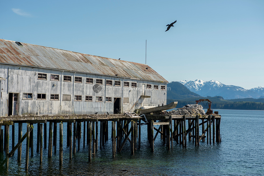 Corrugated metal industrial building on a dock in BC.