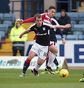 Dundee&rsquo;s Paul McGowan and Hamilton&rsquo;s Alexandre D'Acol - Dundee v Hamilton Academical in the Ladbrokes Scottish Premiership at Dens Park, Dundee, Photo: David Young<br /> <br />  - &copy; David Young - www.davidyoungphoto.co.uk - email: davidyoungphoto@gmail.com