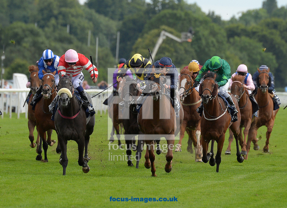A preview of this weekend's favourites in UK racing.<br /> Picture by Martin Lynch/Focus Images Ltd 07501333150<br /> 13/10/2016<br /> <br /> <br /> Original Caption:<br /> Leading on left is Mecca's Angel with P Mulrennan 1st at York 21-8-15.