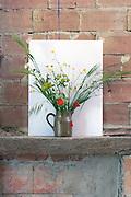 wild flower arrangement against a white background placed