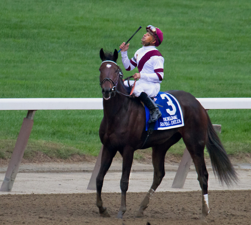 """Royal Delta"", with Mike Smith aboard, after winning the Beldame in 2012."