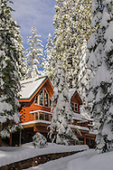 Log cabin home in winter forest, Dorrington, Calaveras County, California
