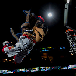 Dec 31, 2018; New Orleans, LA, USA; New Orleans Pelicans mascot Pierre the Pelican performs a dunk in a timeout during the second half against the Minnesota Timberwolves at the Smoothie King Center. Mandatory Credit: Derick E. Hingle-USA TODAY Sports