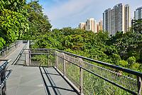 Singapour, promenades sur les Southern Ridges qui permetent de rejoindre les collines de West Coast Park au Mont Faber // Singapore, walk on the Southern Ridges from West Coast Park to Faber Mount