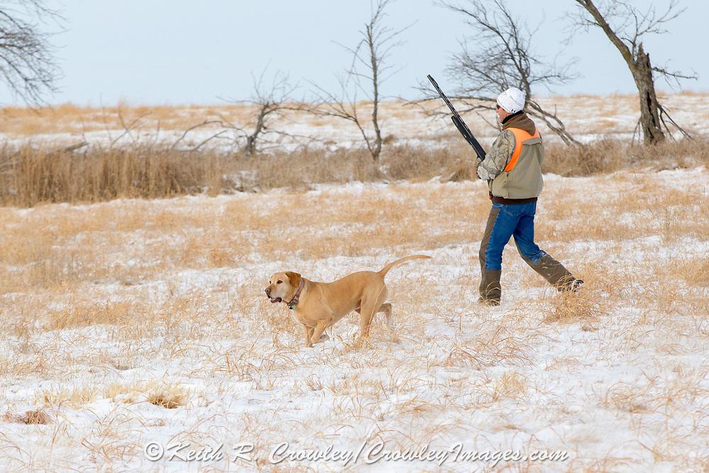 Tom Taunton and Rowdy pheasant hunting in South Dakota