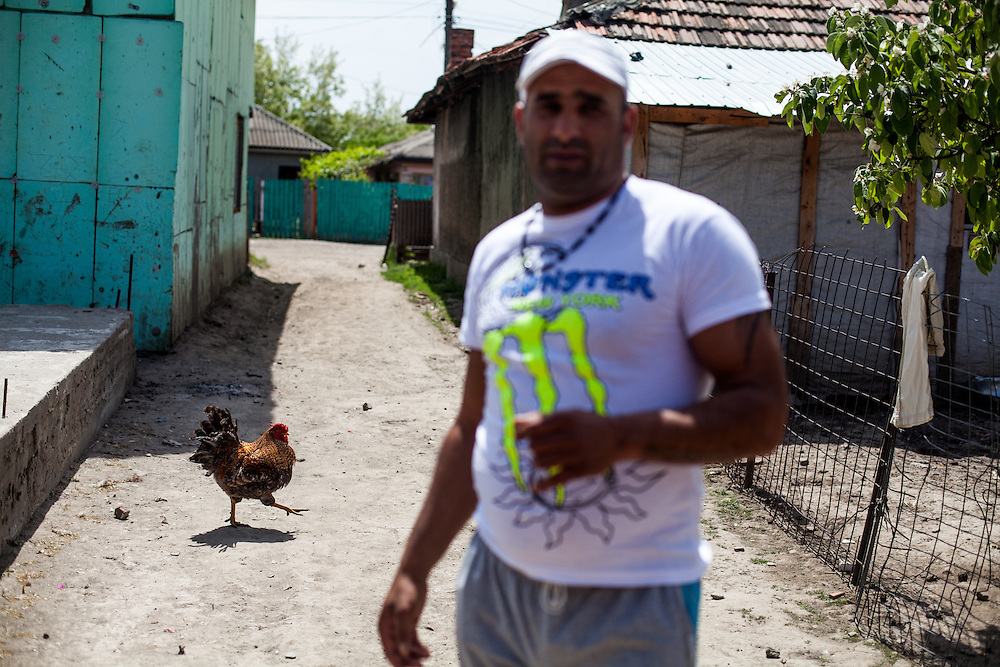 A cock and an inhabitant in a side street of the Roma area of Frumusani.