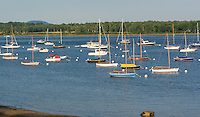 Sailboats moored in harbor, Castine, Maine, USA
