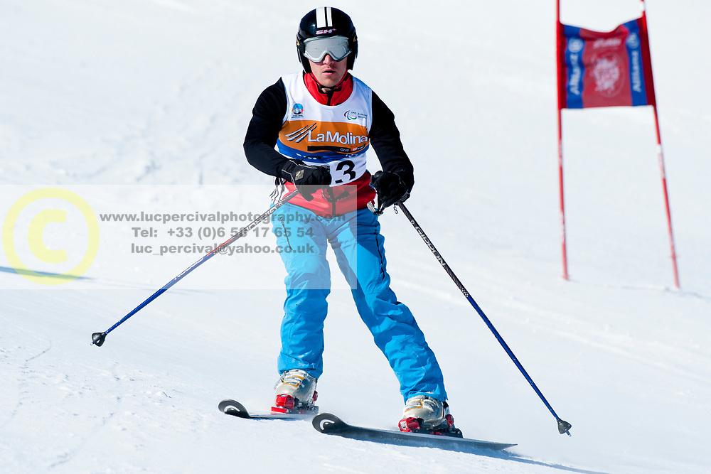 BALOGH Zsolt, HUN, Giant Slalom, 2013 IPC Alpine Skiing World Championships, La Molina, Spain