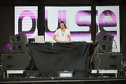 St. Louis-based DJ and producver Rob Lemon performing at the first annual Pulse Festival in St. Louis on June 9, 2012.