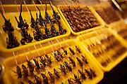 Dong'anmen night market. Deep fried scorpions and diverse insects.