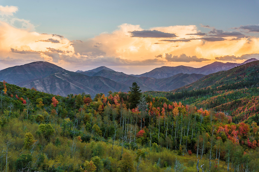 The first signs of Fall colors begin to show in the Wasatch Mountains along the Wasatch Back at sunset.
