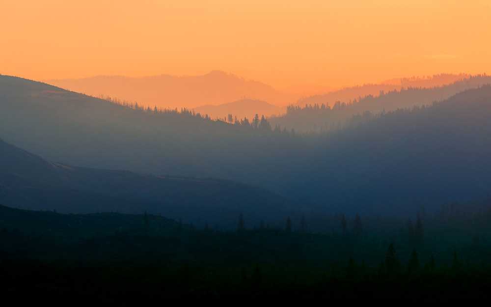 A picture taken as the sun was rising over a forest that had just been burnt by a wildfire.<br /> <br /> Camera <br /> NIKON D610<br /> Lens <br /> 70.0-200.0 mm f/4.0<br /> Focal Length <br /> 200<br /> Shutter Speed <br /> 1/500<br /> Aperture <br /> 8<br /> ISO <br /> 100