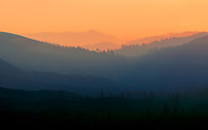 A picture taken as the sun was rising over a forest that had just been burnt by a wildfire.<br />