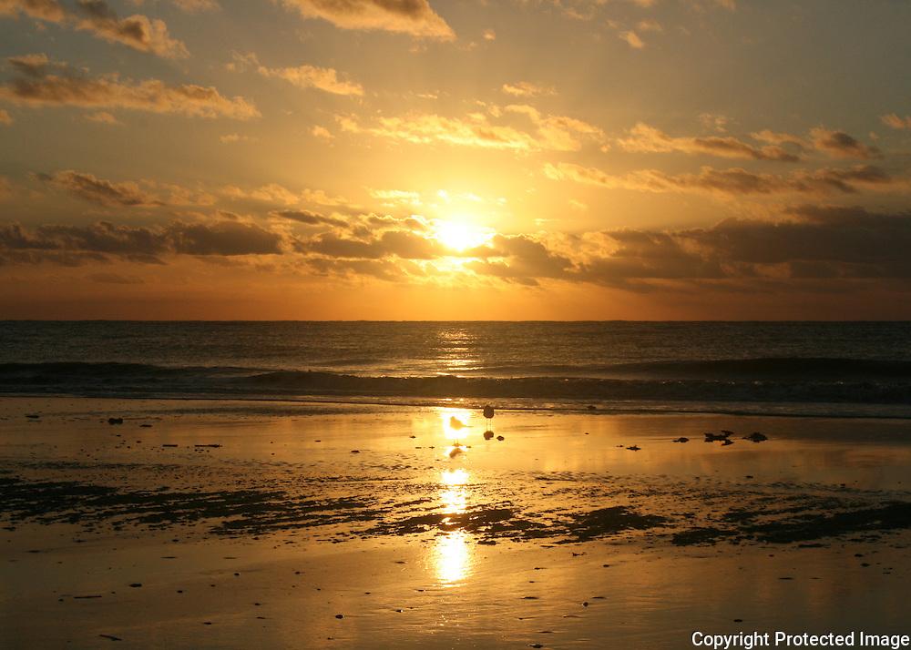 Jekyll golden sunrise