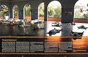 Yoga in India at Sivananda Ashram.<br /> Stora Enso customer magazine: TEMPUS